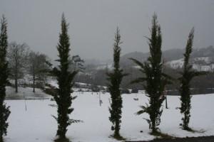 neige-Noël-2010-025a